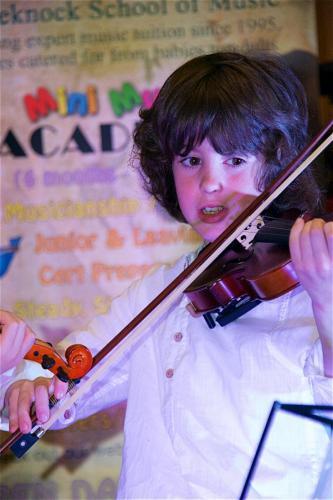 Violin solo cutie